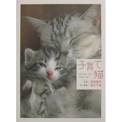 子育て猫 Mother cat,baby cat  /大和書房/板東寛司