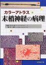 末梢神経の病理 カラ-アトラス  /中外医学社/岡伸幸