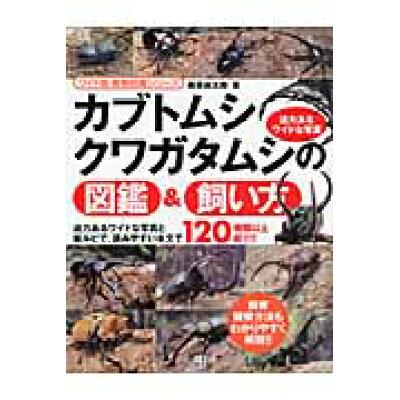 カブトムシ・クワガタムシの図鑑&飼い方   /日東書院本社/藤原尚太郎
