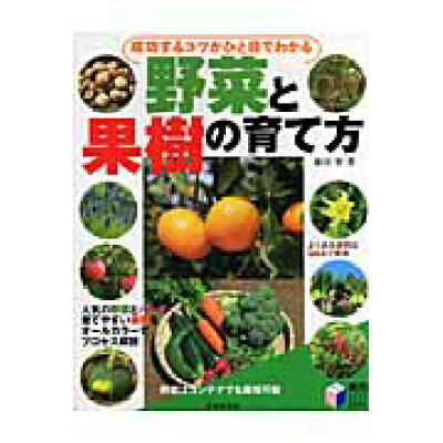 成功するコツがひと目でわかる野菜と果樹の育て方   /日本文芸社/藤田智