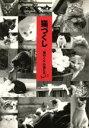 猫づくし 「猫めくり」の猫たちpart 2  /カミン/カミン