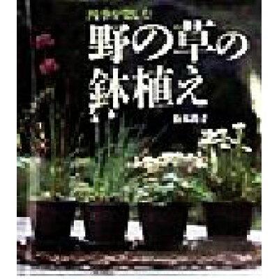 野の草の鉢植え 四季を楽しむ  /文化出版局/松本尚子
