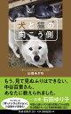 犬と猫の向こう側   /扶桑社/山田あかね