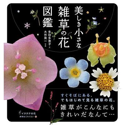 美しき小さな雑草の花図鑑   /山と渓谷社/大作晃一