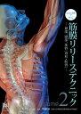 ビジュアルで学ぶ筋膜リリーステクニック 頚部、頭部、体幹〔脊柱・肋骨〕 Volume2 /医道の日本社/ティル・ルチャウ