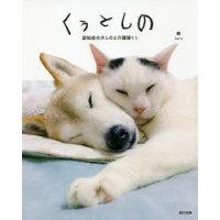 くぅとしの 認知症の犬と介護猫くぅ  /辰巳出版/晴