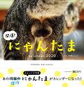 開運!にゃんたまカレンダー  2020 /辰巳出版
