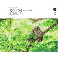 カレンダー 東京カメラ部×〓出版社 北のカムイ 命煌めく、野生動物   /〓出版社