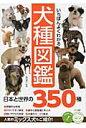 いちばんよくわかる犬種図鑑日本と世界の350種   /メイツ出版/奥田香代