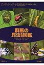 群馬の昆虫生態図鑑 チョウ・ガ/トンボ/コウチュウ/バッタ カメムシ・  /メイツ出版/葛生淳一