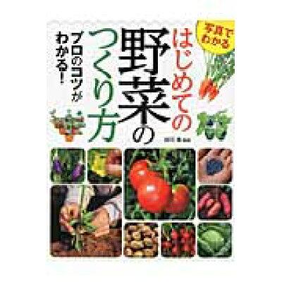 写真でわかるはじめての野菜のつくり方 プロのコツがわかる!  /西東社/酒川香