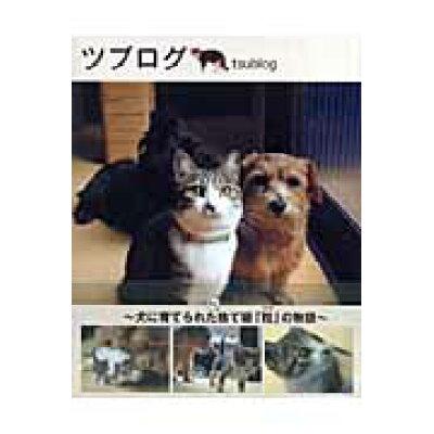 ツブログ 犬に育てられたもと捨て猫「粒」の物語  /宝島社/ごとうけいこ