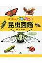 昆虫図鑑   /汐文社/森上信夫
