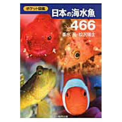 日本の海水魚466 ポケット図鑑  /文一総合出版/峯水亮