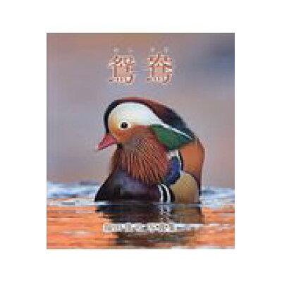 鴛鴦 福田俊司写真集  /文一総合出版/福田俊司