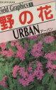 野の花  ア-バン /北隆館