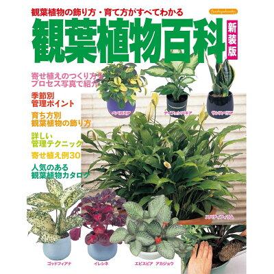 観葉植物百科 観葉植物の飾り方・育て方がすべてわかる  新装版/ブティック社