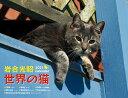 2021岩合光昭 世界の猫カレンダー