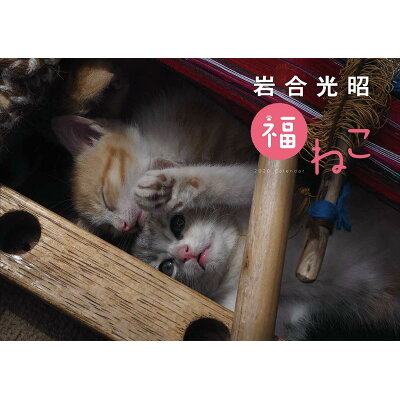 岩合光昭福ねこカレンダー  2020年版 /神宮館