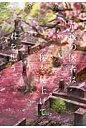 最後の医者は桜を見上げて君を想う   /TOブックス/二宮敦人