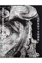 星野美智子全版画集 1971-2006  /阿部出版/星野美智子