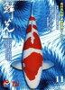 鱗光 錦鯉の専門誌 No.599(2017 11) /新日本教育図書