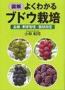 図解よくわかるブドウ栽培   /創森社/小林和司