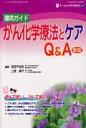 徹底ガイドがん化学療法とケアQ&A   第2版/総合医学社/石岡千加史
