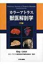 カラ-アトラス獣医解剖学  下巻 /チクサン出版社/ホルスト・エ-リッヒ・ク-ニッヒ