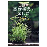 山野草寄せ植えを楽しむ 野の草花と過ごすひととき  /栃の葉書房