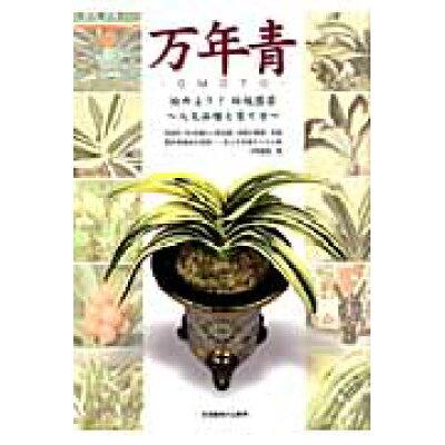 万年青 始めよう!伝統園芸  /栃の葉書房/水野豊隆