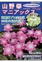 山野草マニアックス  vol.39 /栃の葉書房
