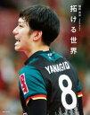拓ける世界 柳田将洋パーソナルブック  /日本文化出版/柳田将洋