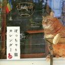 ぽっちゃり猫CALENDAR  2018 /緑書房(中央区)