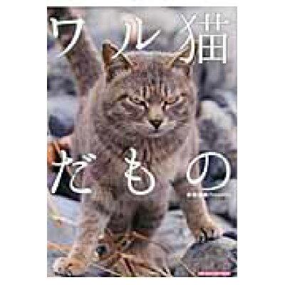 ワル猫だもの   /マガジン・マガジン/南幅俊輔