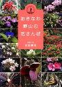 おきなわ野山の花さんぽ   /ボ-ダ-インク/安里肇栄