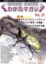 くわがたマガジン NO.29