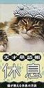 天才単語帳休息 猫が教える休息の方法  /いろは出版/いろは出版株式会社