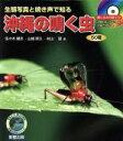 沖縄の鳴く虫 生態写真と鳴き声で知る 50種  /新星出版/佐々木健志
