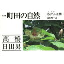 町田の自然 写真集谷戸山点描  /朝日ネット/高橋日出男