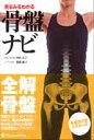見るみるわかる骨盤ナビ   /ラウンドフラット/竹内京子