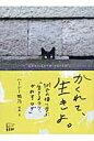 かくれて、生きよ。 101匹の猫に学ぶ「生きるコツ、かわすワザ」  /悟空出版/ハ-シ-鴨乃