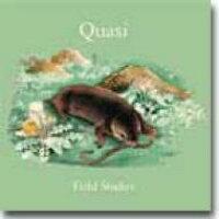 Field Studies / Quasi