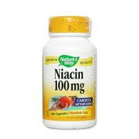 ナイアシン 100mg 100粒