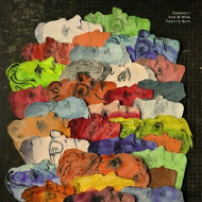 Iron & Wine / Calexico / Years To Burn 輸入盤