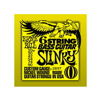 ERNIE BALL 2837 6-STRING BASS GUITAR 6弦ベースギター弦 / アーニーボール