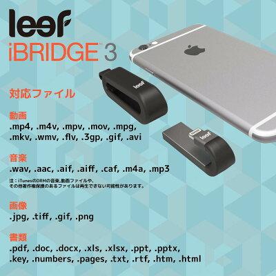 leef Lightningフラッシュメモリ LIB300KK064E1 64GB