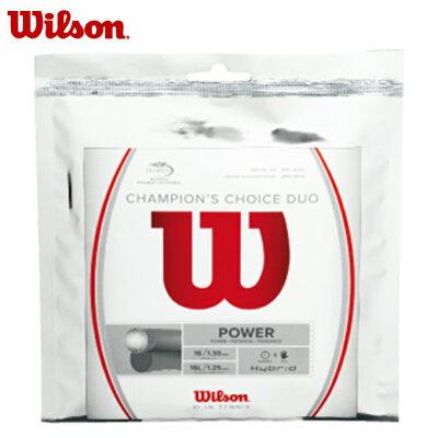 ウイルソン Wilson チャンピオンズ・チョイス CHAMPION'S CHOICE DUO ナチュラル/シルバー WRZ997900