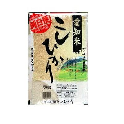 愛知県産コシヒカリ